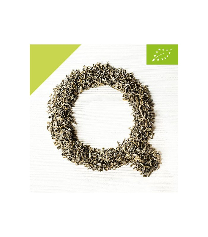 Silver Sprout Bio